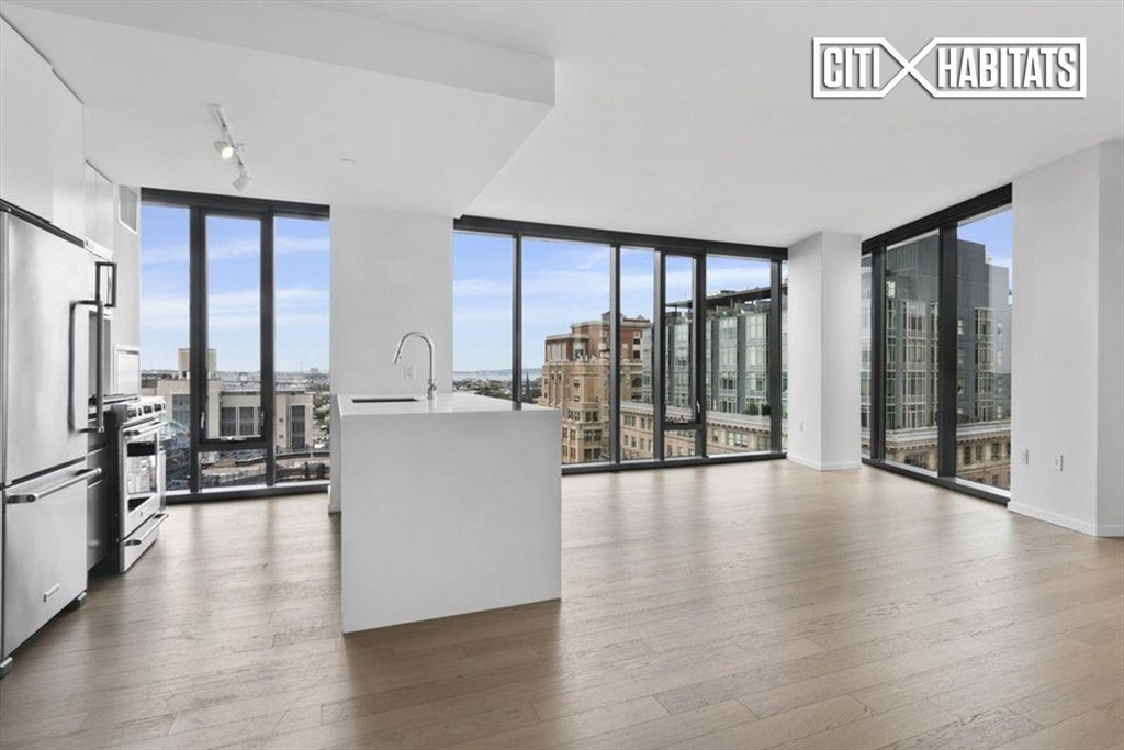 3 Apartment in Downtown Brooklyn