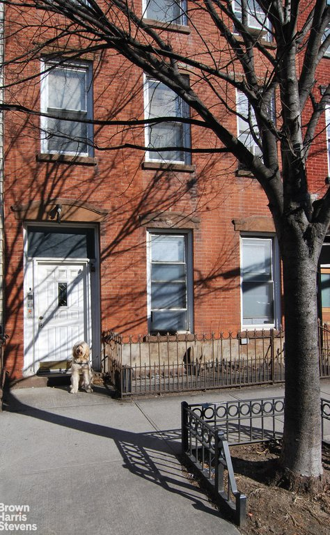 Studio Townhouse in Greenpoint